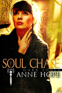 SoulChase300