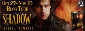 Blood Shadow Banner 851 x 315